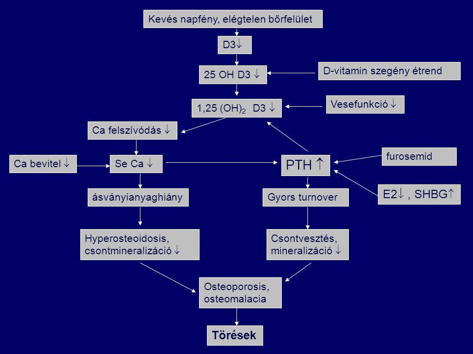 Kevés napfény, elégtelen bőrfelület D3  25 OH D3  1,25 (OH) 2 D3  Ca felszívódás  Ca bevitel  Se Ca  ásványianyaghiány Hyperosteoidosis, csontmi