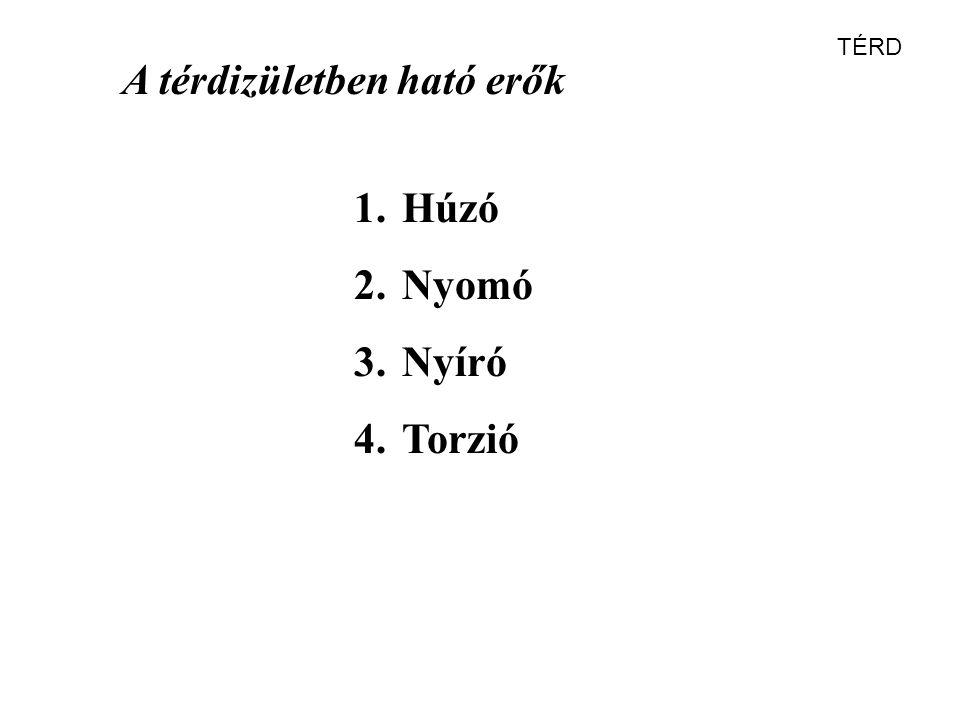 A térdizületben ható erők 1.Húzó 2.Nyomó 3.Nyíró 4.Torzió TÉRD