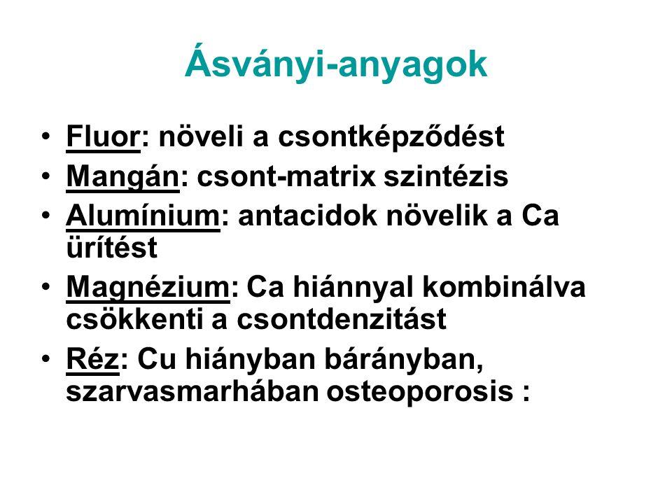 Ásványi-anyagok Fluor: növeli a csontképződést Mangán: csont-matrix szintézis Alumínium: antacidok növelik a Ca ürítést Magnézium: Ca hiánnyal kombiná