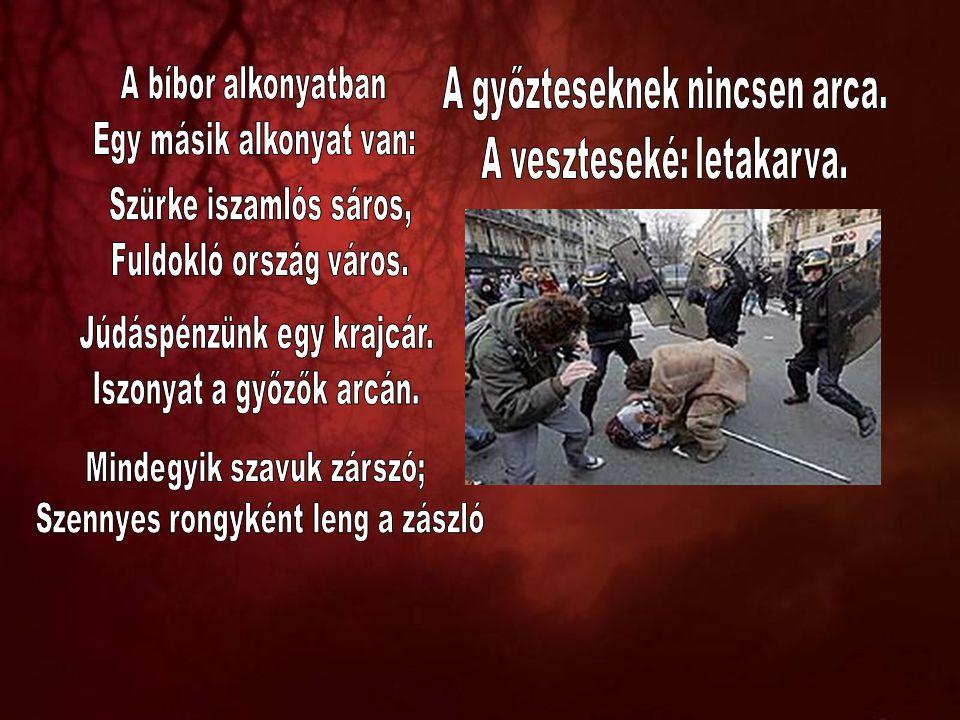 """""""A Magyar Köztársaságban minden hatalom a népé, amely a népszuverenitást választott képviselői útján, valamint közvetlenül gyakorolja , munkálja ki, teremtse meg az új, a végleges Alkotmányt."""