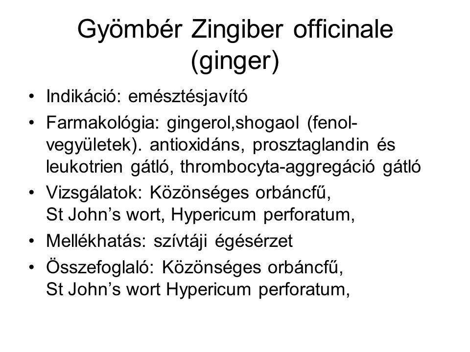 Gyömbér Zingiber officinale (ginger) Indikáció: emésztésjavító Farmakológia: gingerol,shogaol (fenol- vegyületek). antioxidáns, prosztaglandin és leuk