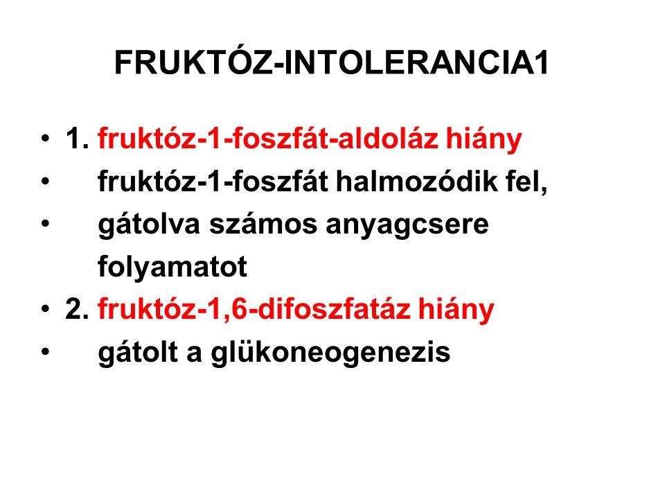 FRUKTÓZ-INTOLERANCIA 2 T: répacukor, gyümölcs, ill.
