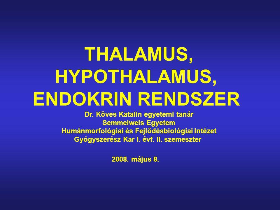 THALAMUS, HYPOTHALAMUS, ENDOKRIN RENDSZER Dr. Köves Katalin egyetemi tanár Semmelweis Egyetem Humánmorfológiai és Fejlődésbiológiai Intézet Gyógyszeré