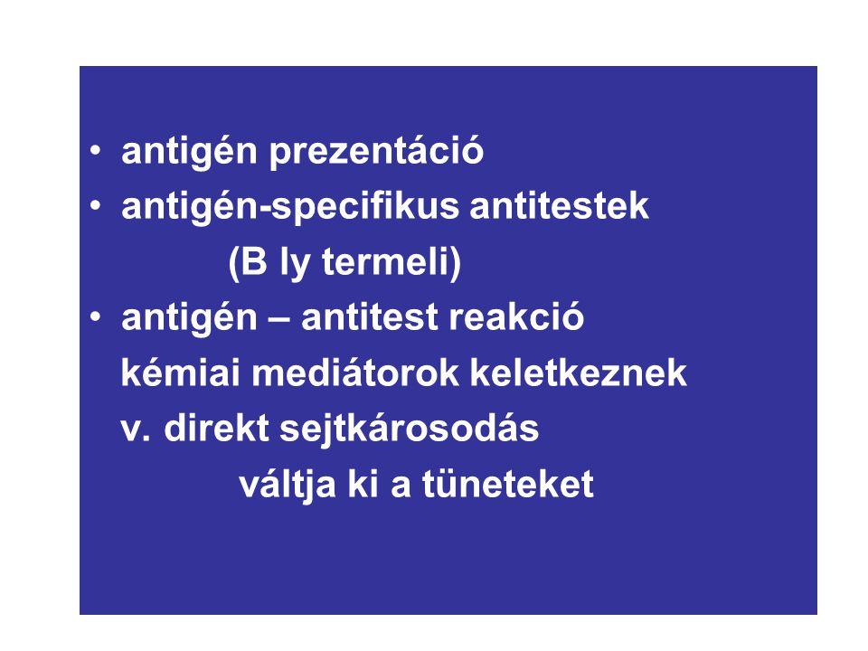 n antigén prezentáció antigén-specifikus antitestek (B ly termeli) antigén – antitest reakció kémiai mediátorok keletkeznek v. direkt sejtkárosodás vá