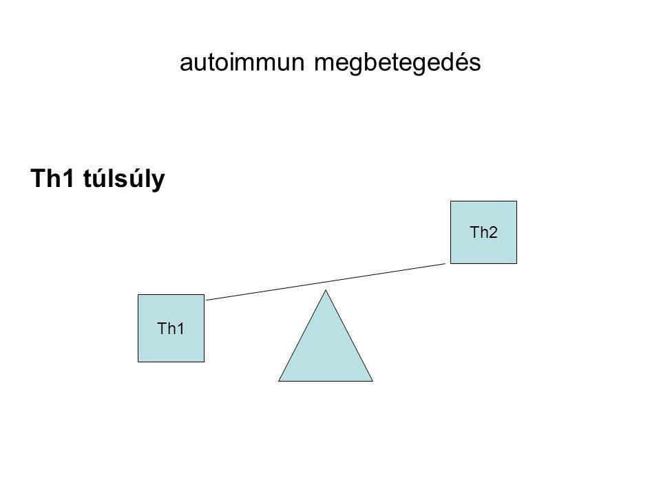 autoimmun megbetegedés Th1 túlsúly Th1 Th2