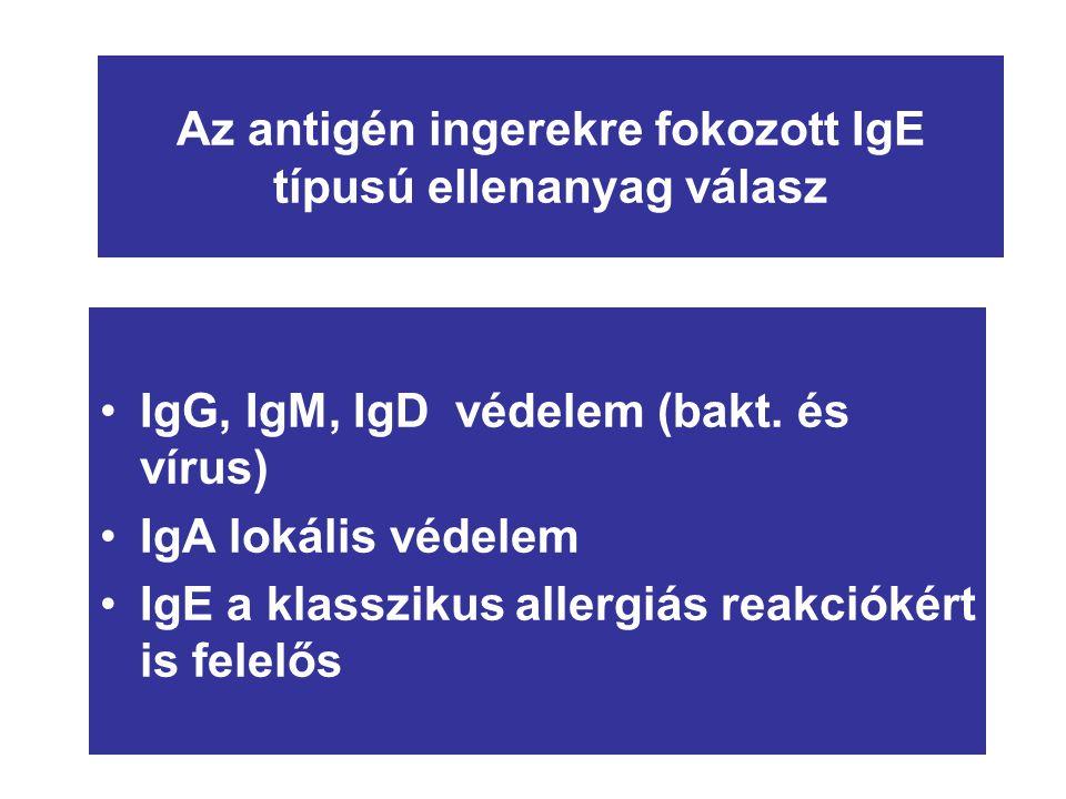 Az antigén ingerekre fokozott IgE típusú ellenanyag válasz IgG, IgM, IgD védelem (bakt. és vírus) IgA lokális védelem IgE a klasszikus allergiás reakc
