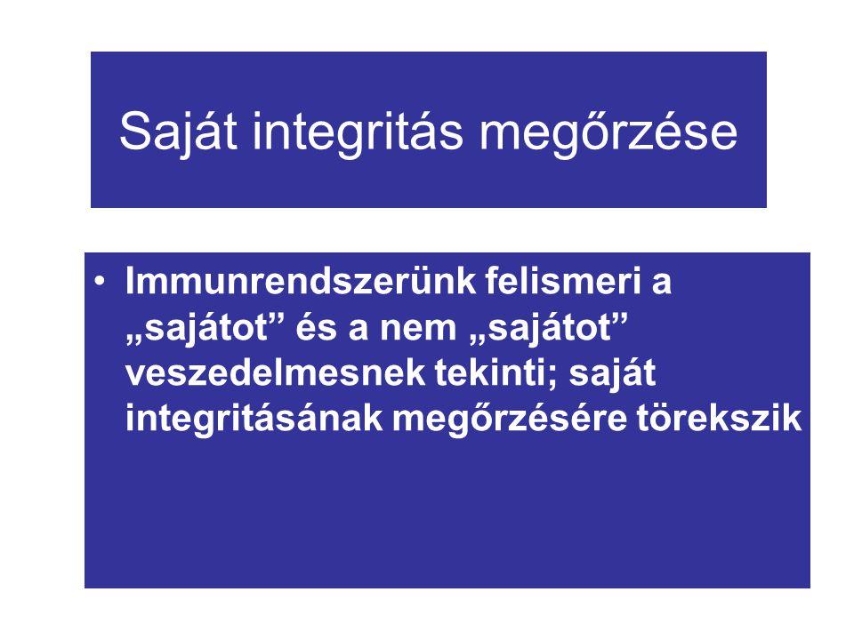 """Saját integritás megőrzése Immunrendszerünk felismeri a """"sajátot"""" és a nem """"sajátot"""" veszedelmesnek tekinti; saját integritásának megőrzésére törekszi"""
