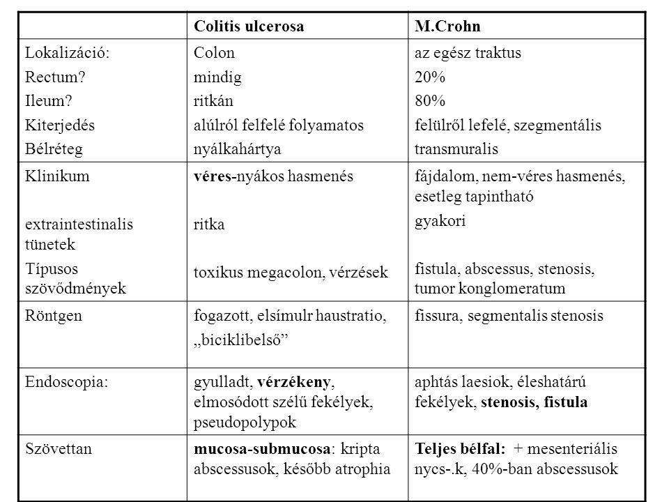 Colitis ulcerosaM.Crohn Lokalizáció: Rectum? Ileum? Kiterjedés Bélréteg Colon mindig ritkán alúlról felfelé folyamatos nyálkahártya az egész traktus 2