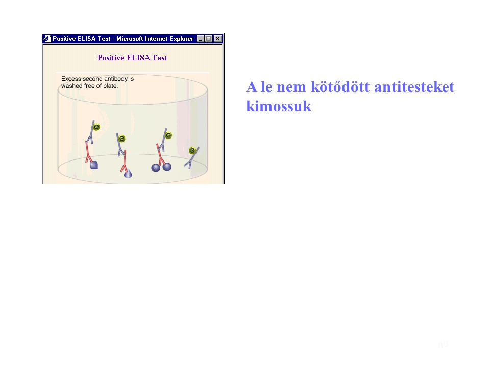 10 A le nem kötődött antitesteket kimossuk