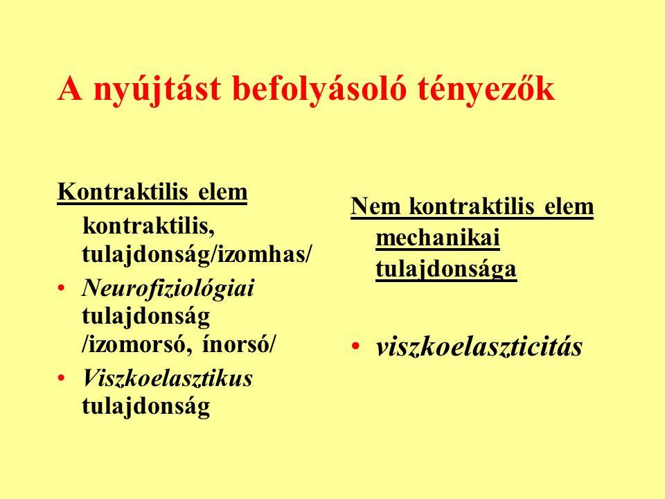 A nyújtást befolyásoló tényezők Kontraktilis elem kontraktilis, tulajdonság/izomhas/ Neurofiziológiai tulajdonság /izomorsó, ínorsó/ Viszkoelasztikus