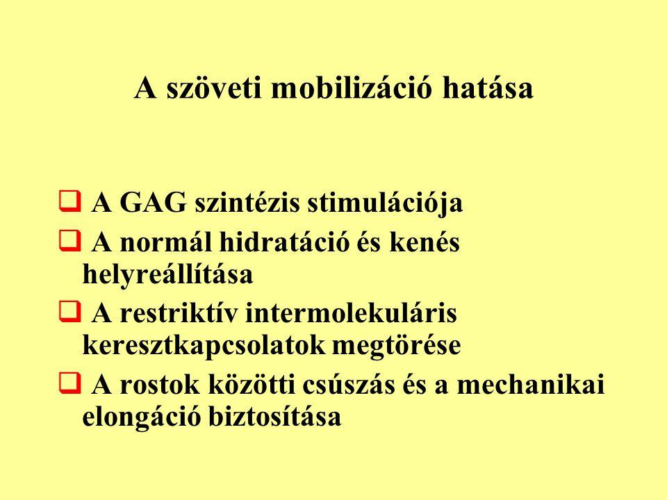 A szöveti mobilizáció hatása  A GAG szintézis stimulációja  A normál hidratáció és kenés helyreállítása  A restriktív intermolekuláris keresztkapcs