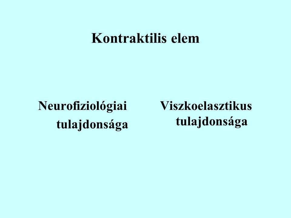 Kontraktilis elem Neurofiziológiai tulajdonsága Viszkoelasztikus tulajdonsága