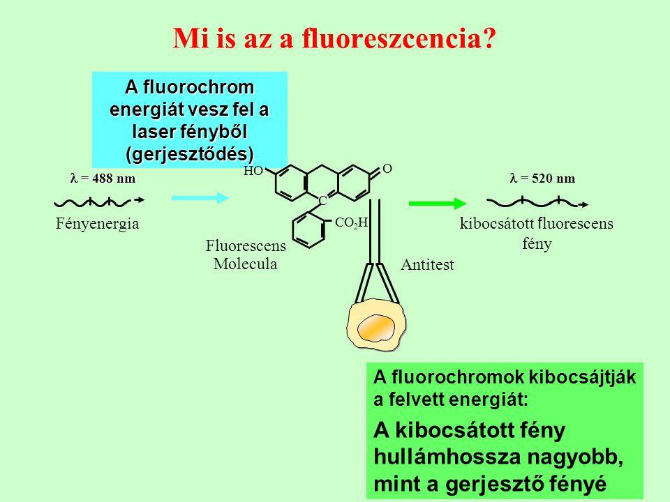 16 Mi is az a fluoreszcencia? A fluorochrom energiát vesz fel a laser fényből (gerjesztődés) A fluorochromok kibocsájtják a felvett energiát: A kibocs