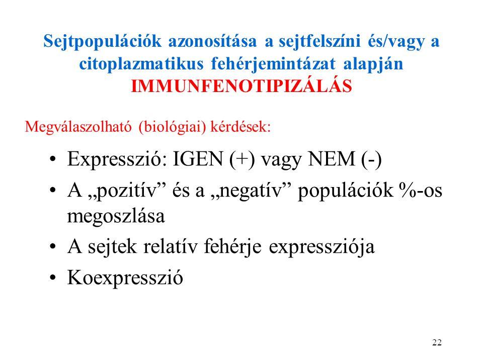 22 Sejtpopulációk azonosítása a sejtfelszíni és/vagy a citoplazmatikus fehérjemintázat alapján IMMUNFENOTIPIZÁLÁS Expresszió: IGEN (+) vagy NEM (-) A