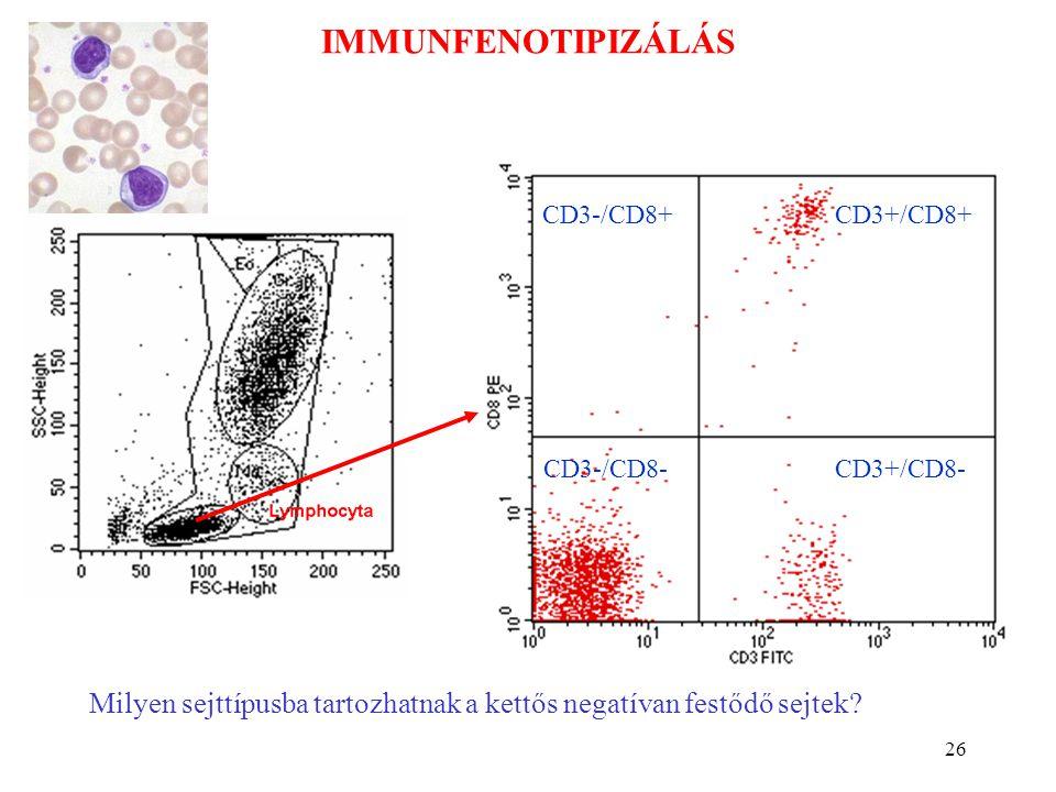 26 IMMUNFENOTIPIZÁLÁS CD3+/CD8+ CD3+/CD8- CD3-/CD8+ CD3-/CD8- Milyen sejttípusba tartozhatnak a kettős negatívan festődő sejtek?