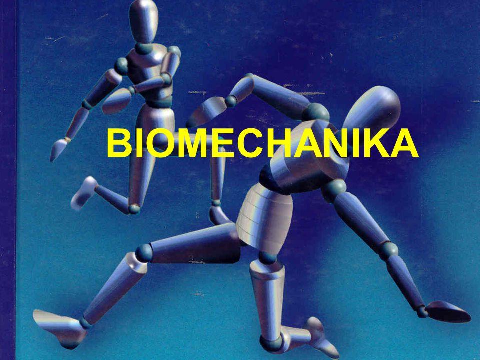 Giovanni Alfonso Borelli (1608-1679) A modern biomechanika atyja A matematika, a fizika és az anatómia összekapcsolása Az első tudós, aki kinyilvánította, hogy az emberi izomrendszer mechanikai törvények szerint működik Az állatok mozgása nem csak a belső erőktől, de a víz és a levegő ellenállásától is függ.