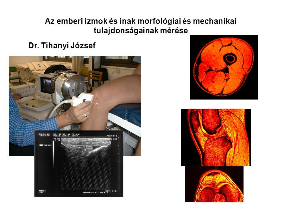 Az egész test vibráció hatása a dinamikus erő fejlődésére. Dr. Tihanyi József, Rácz Levente, Gyulay Gergely