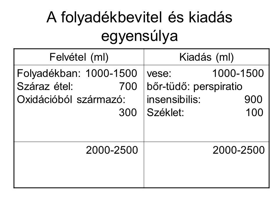 A folyadékbevitel és kiadás egyensúlya Felvétel (ml)Kiadás (ml) Folyadékban: 1000-1500 Száraz étel: 700 Oxidációból származó: 300 vese: 1000-1500 bőr-