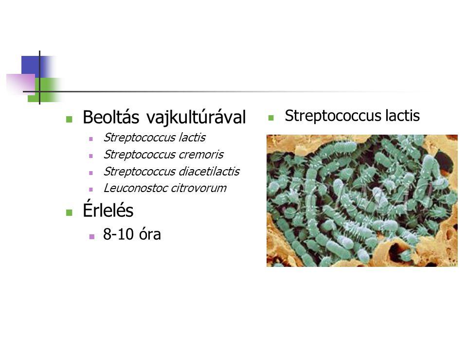 Beoltás vajkultúrával Streptococcus lactis Streptococcus cremoris Streptococcus diacetilactis Leuconostoc citrovorum Érlelés 8-10 óra Streptococcus la
