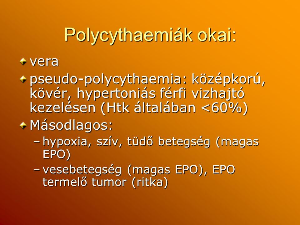 Polycythaemiák okai: vera pseudo-polycythaemia: középkorú, kövér, hypertoniás férfi vizhajtó kezelésen (Htk általában <60%) Másodlagos: –hypoxia, szív