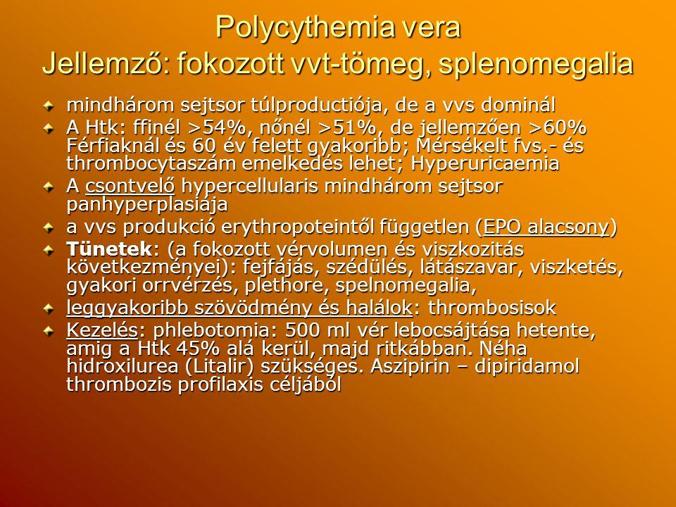 Polycythemia vera Jellemző: fokozott vvt-tömeg, splenomegalia mindhárom sejtsor túlproductiója, de a vvs dominál A Htk: ffinél >54%, nőnél >51%, de je