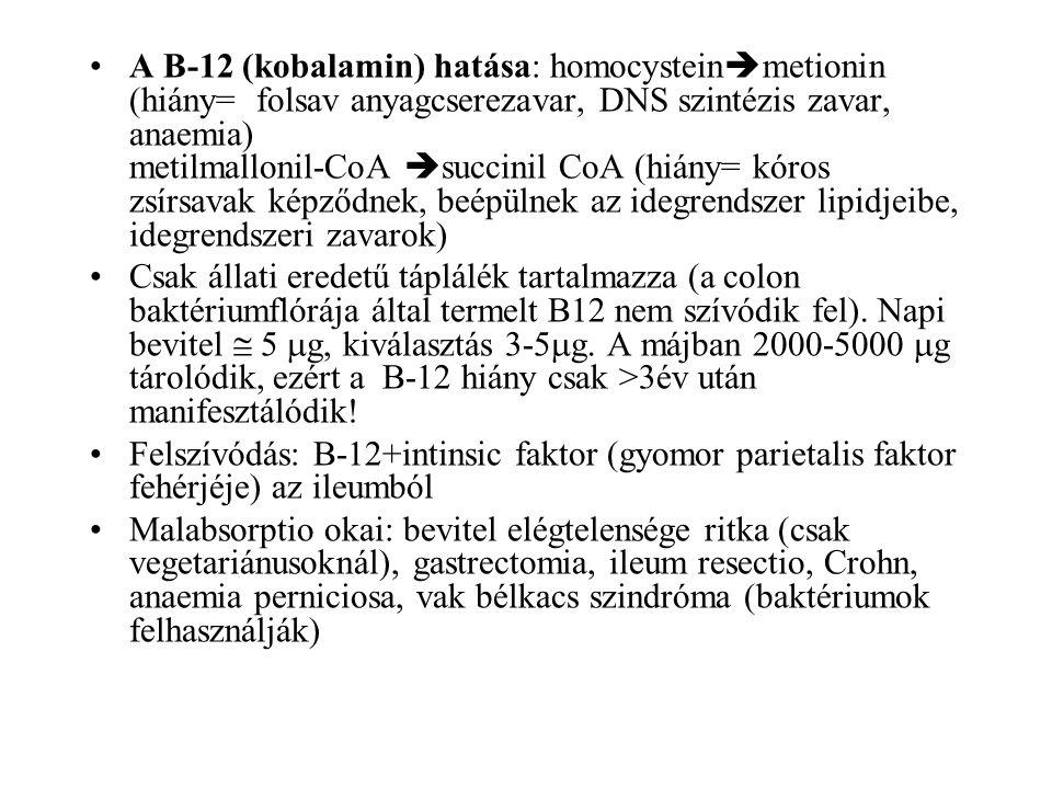 A B-12 (kobalamin) hatása: homocystein  metionin (hiány= folsav anyagcserezavar, DNS szintézis zavar, anaemia) metilmallonil-CoA  succinil CoA (hián
