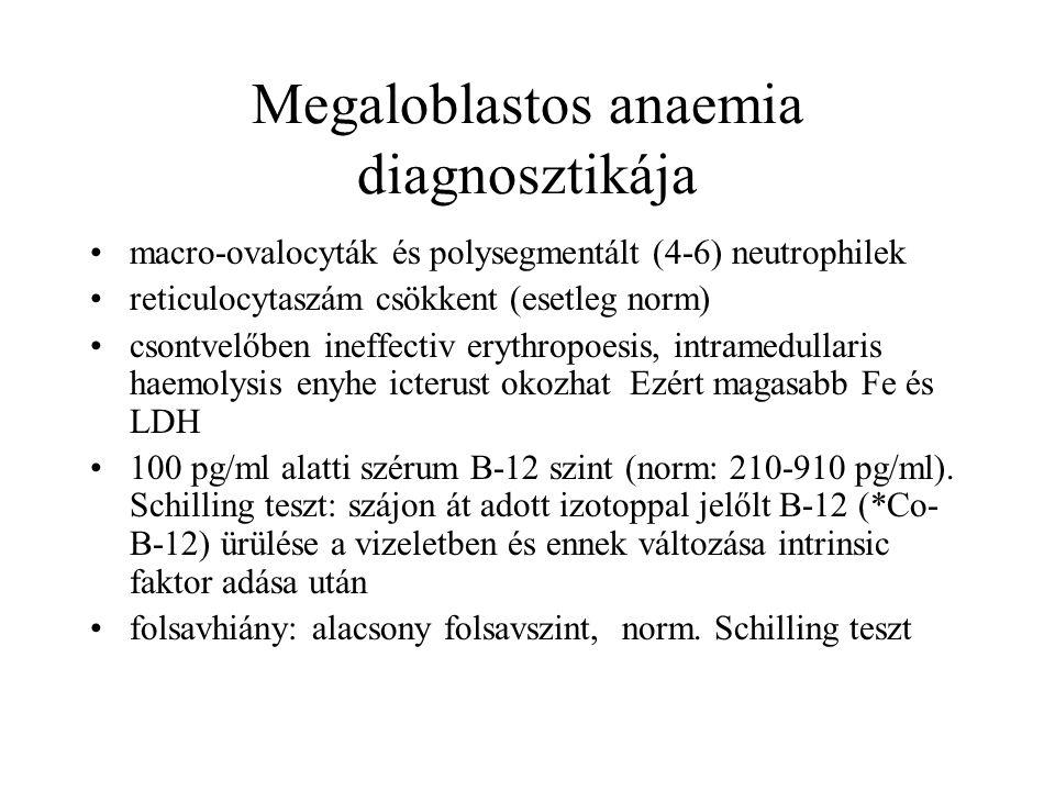 Megaloblastos anaemia diagnosztikája macro-ovalocyták és polysegmentált (4-6) neutrophilek reticulocytaszám csökkent (esetleg norm) csontvelőben ineff
