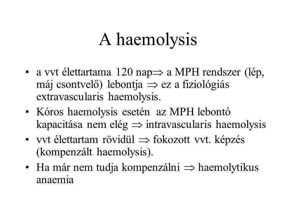 A haemolysis a vvt élettartama 120 nap  a MPH rendszer (lép, máj csontvelő) lebontja  ez a fiziológiás extravascularis haemolysis. Kóros haemolysis