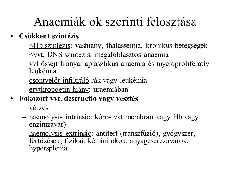 Anaemiák ok szerinti felosztása Csökkent szintézis –<Hb szintézis: vashiány, thalassemia, krónikus betegségek –<vvt. DNS szintézis: megaloblasztos ana