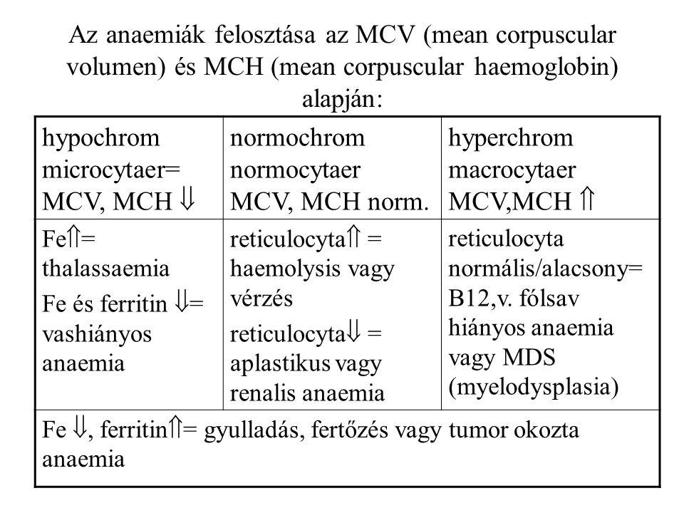 Az anaemiák felosztása az MCV (mean corpuscular volumen) és MCH (mean corpuscular haemoglobin) alapján: hypochrom microcytaer= MCV, MCH  normochrom n