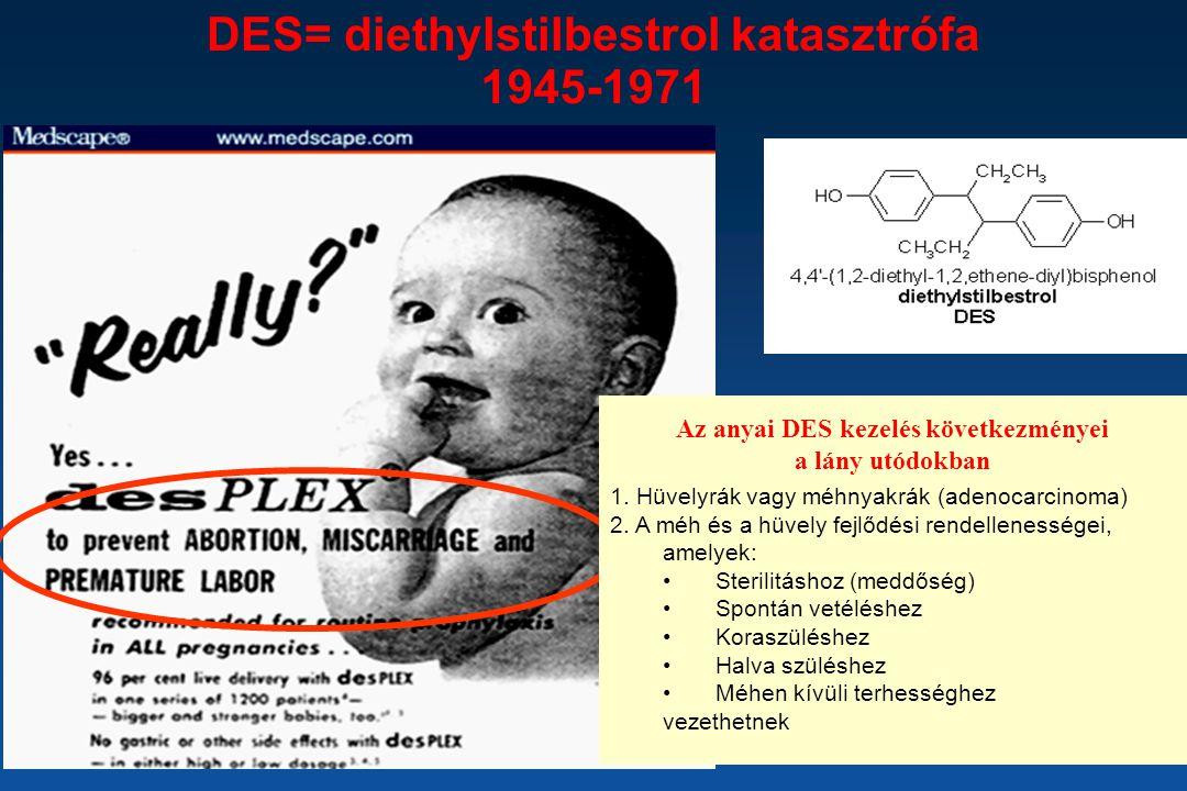 DES= diethylstilbestrol katasztrófa 1945-1971 1. Hüvelyrák vagy méhnyakrák (adenocarcinoma) 2. A méh és a hüvely fejlődési rendellenességei, amelyek: