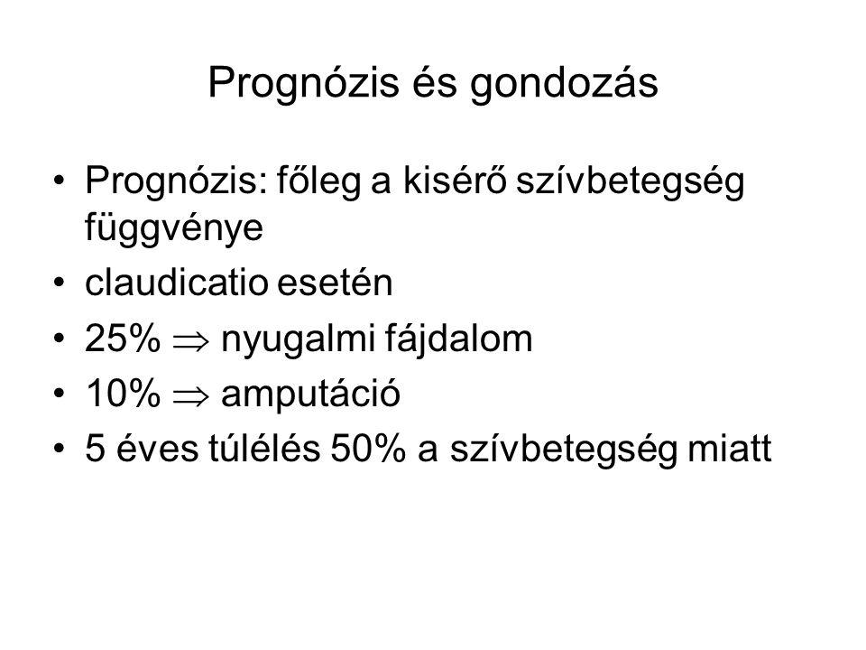 Prognózis és gondozás Prognózis: főleg a kisérő szívbetegség függvénye claudicatio esetén 25%  nyugalmi fájdalom 10%  amputáció 5 éves túlélés 50% a