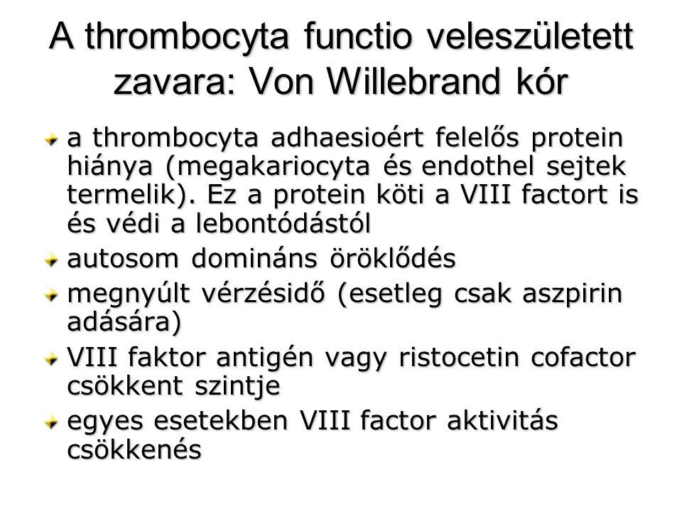 A thrombocyta functio veleszületett zavara: Von Willebrand kór a thrombocyta adhaesioért felelős protein hiánya (megakariocyta és endothel sejtek term
