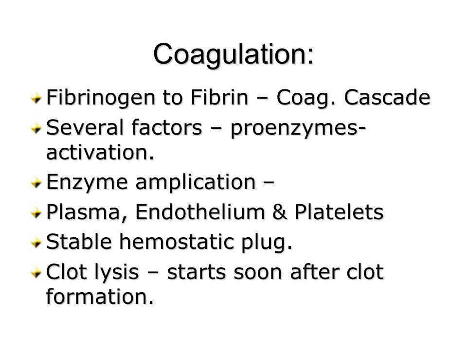 Coagulation: Fibrinogen to Fibrin – Coag. Cascade Several factors – proenzymes- activation. Enzyme amplication – Plasma, Endothelium & Platelets Stabl