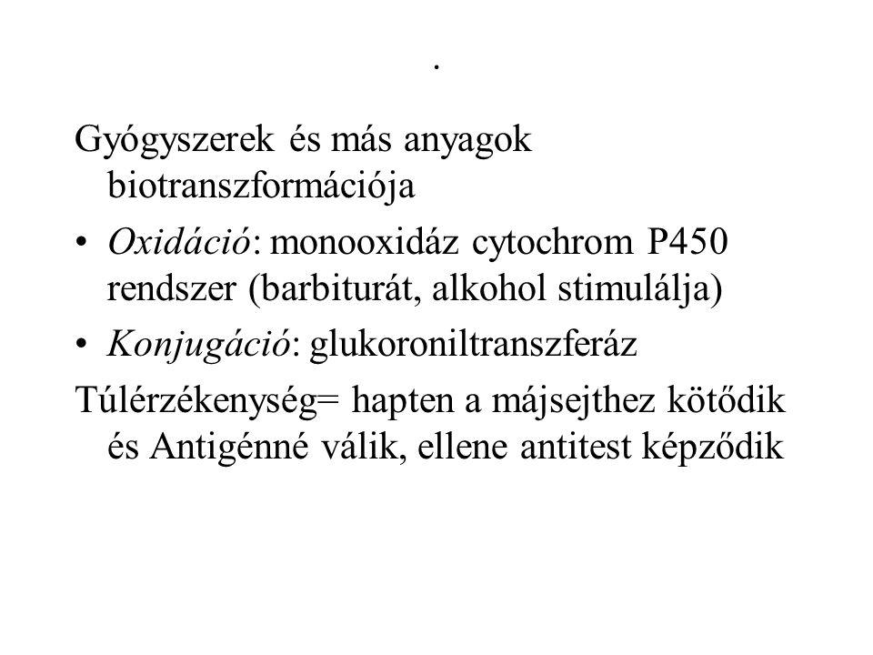 . Gyógyszerek és más anyagok biotranszformációja Oxidáció: monooxidáz cytochrom P450 rendszer (barbiturát, alkohol stimulálja) Konjugáció: glukoronilt