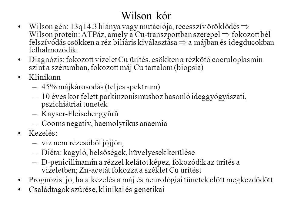 Wilson kór Wilson gén: 13q14.3 hiánya vagy mutációja, recesszív öröklődés  Wilson protein: ATPáz, amely a Cu-transzportban szerepel  fokozott bél fe