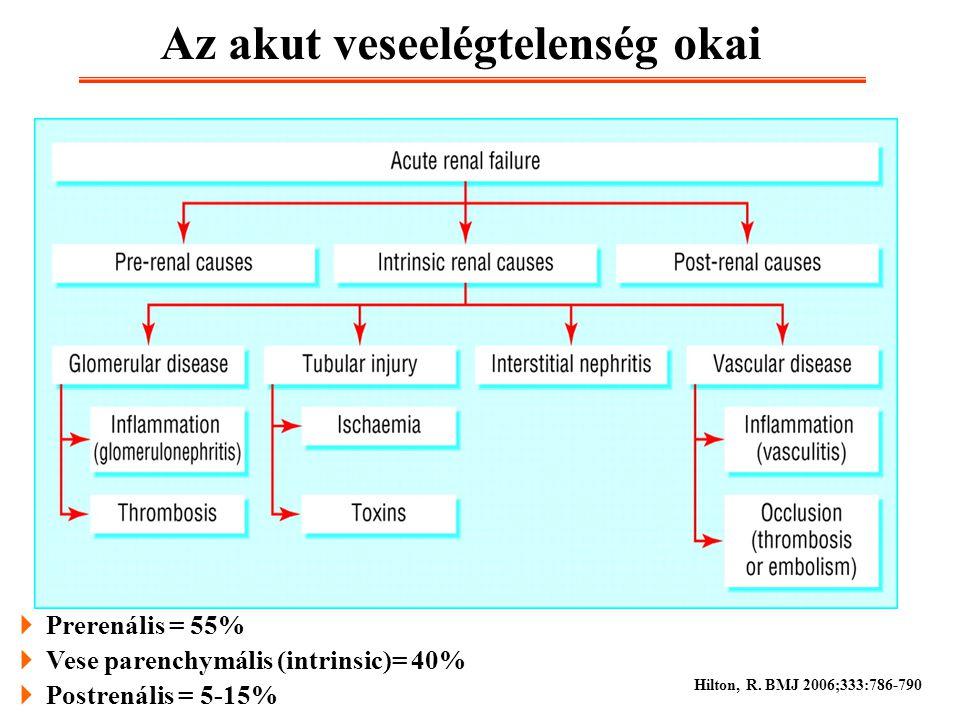 Az akut veseelégtelenség okai  Prerenális = 55%  Vese parenchymális (intrinsic)= 40%  Postrenális = 5-15% Hilton, R. BMJ 2006;333:786-790