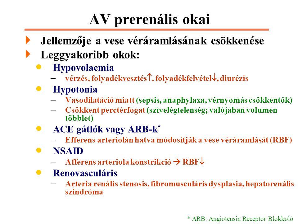 AV prerenális okai  Jellemzője a vese véráramlásának csökkenése  Leggyakoribb okok:  Hypovolaemia  vérzés, folyadékvesztés , folyadékfelvétel ,