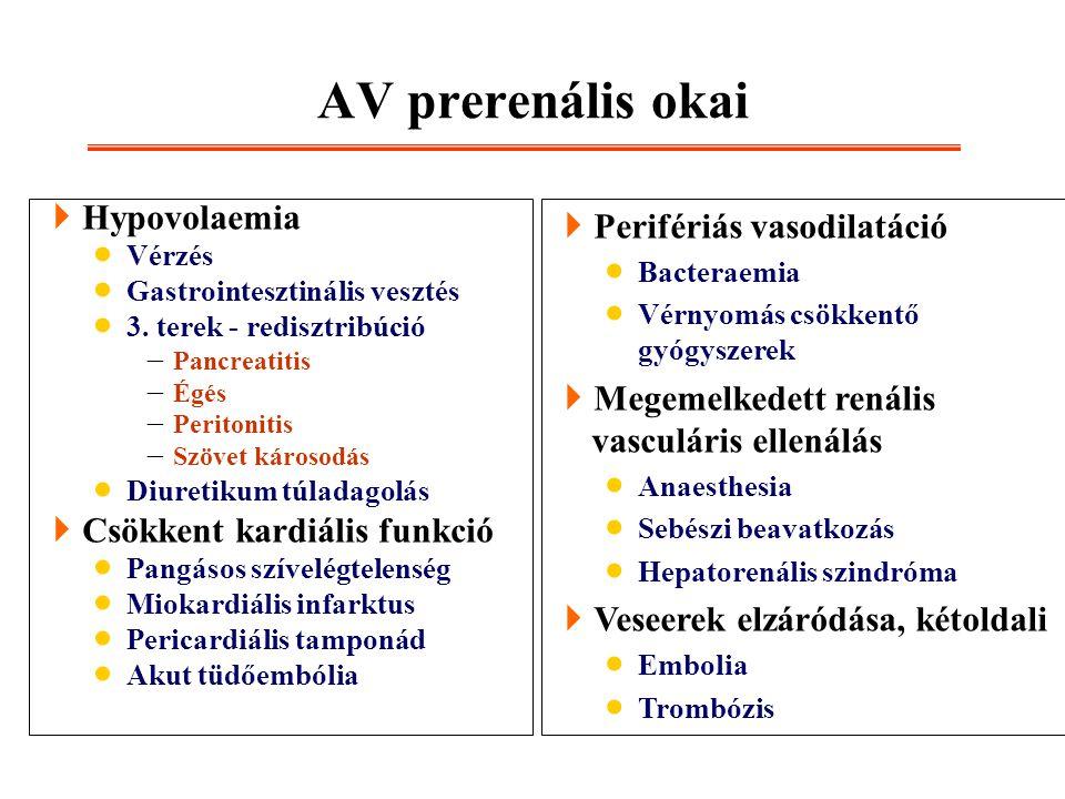  Hypovolaemia  Vérzés  Gastrointesztinális vesztés  3. terek - redisztribúció  Pancreatitis  Égés  Peritonitis  Szövet károsodás  Diuretikum