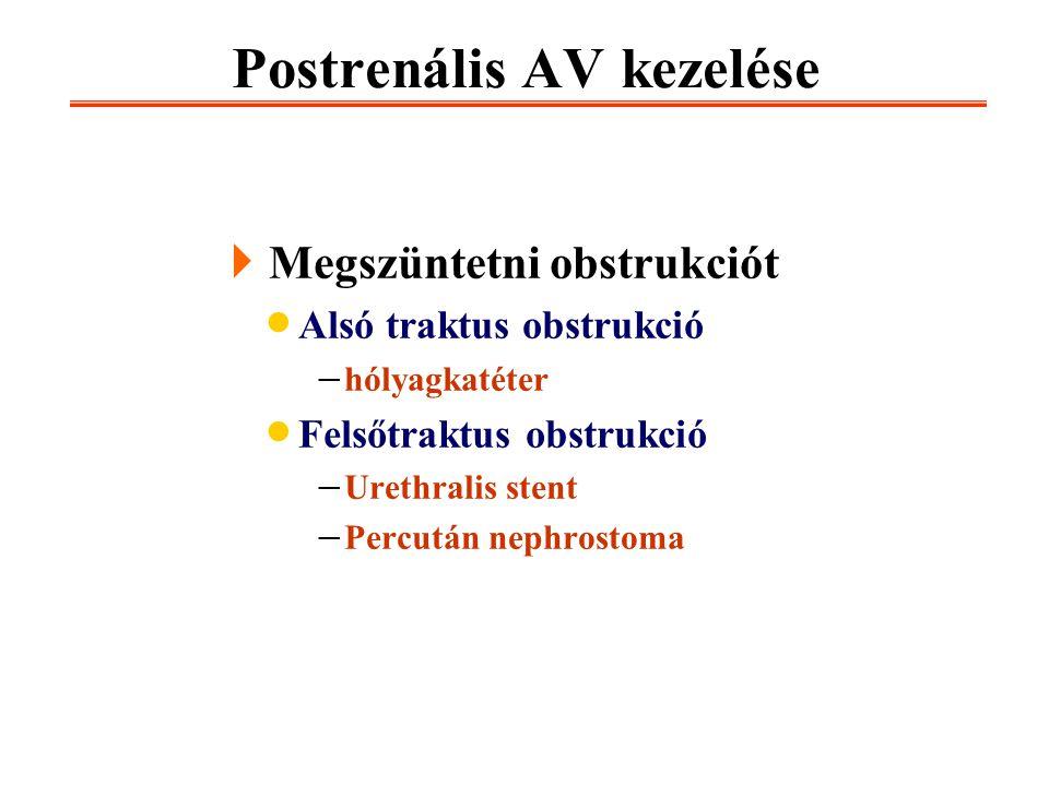 Postrenális AV kezelése  Megszüntetni obstrukciót  Alsó traktus obstrukció  hólyagkatéter  Felsőtraktus obstrukció  Urethralis stent  Percután n