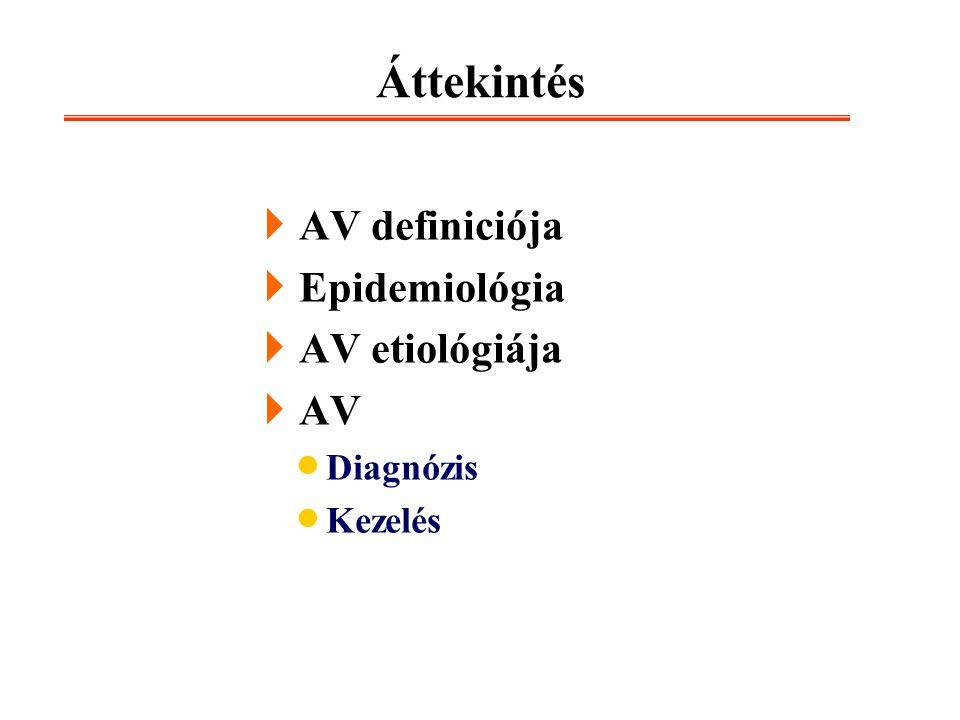 Áttekintés  AV definiciója  Epidemiológia  AV etiológiája  AV  Diagnózis  Kezelés