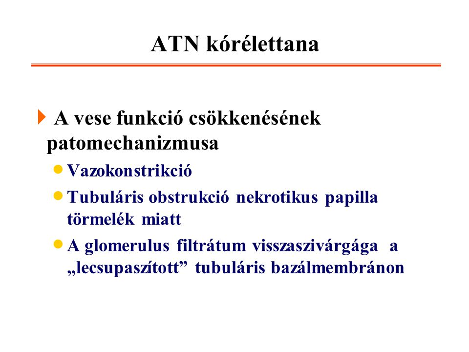 ATN kórélettana  A vese funkció csökkenésének patomechanizmusa  Vazokonstrikció  Tubuláris obstrukció nekrotikus papilla törmelék miatt  A glomeru