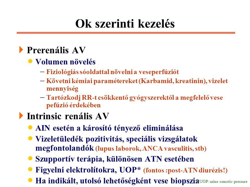 Ok szerinti kezelés  Prerenális AV  Volumen növelés  Fiziológiás sóoldattal növelni a veseperfúziót  Követni kémiai paramétereket (Karbamid, kreat