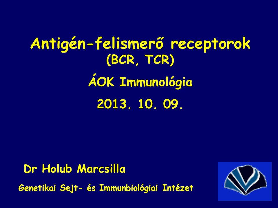Antigén-felismerő receptorok (BCR, TCR) ÁOK Immunológia 2013. 10. 09. Dr Holub Marcsilla Genetikai Sejt- és Immunbiológiai Intézet