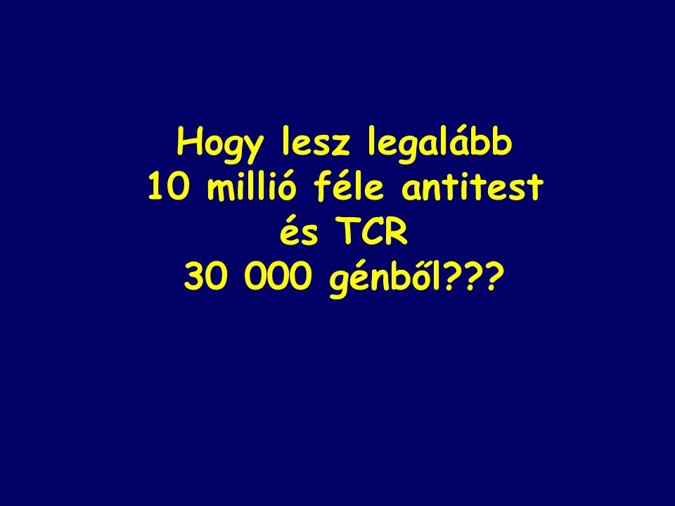 Hogy lesz legalább 10 millió féle antitest és TCR 30 000 génből???