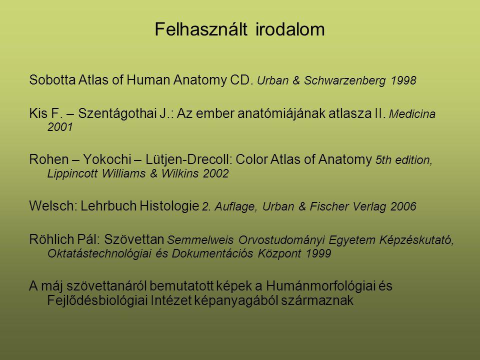 Felhasznált irodalom Sobotta Atlas of Human Anatomy CD. Urban & Schwarzenberg 1998 Kis F. – Szentágothai J.: Az ember anatómiájának atlasza II. Medici