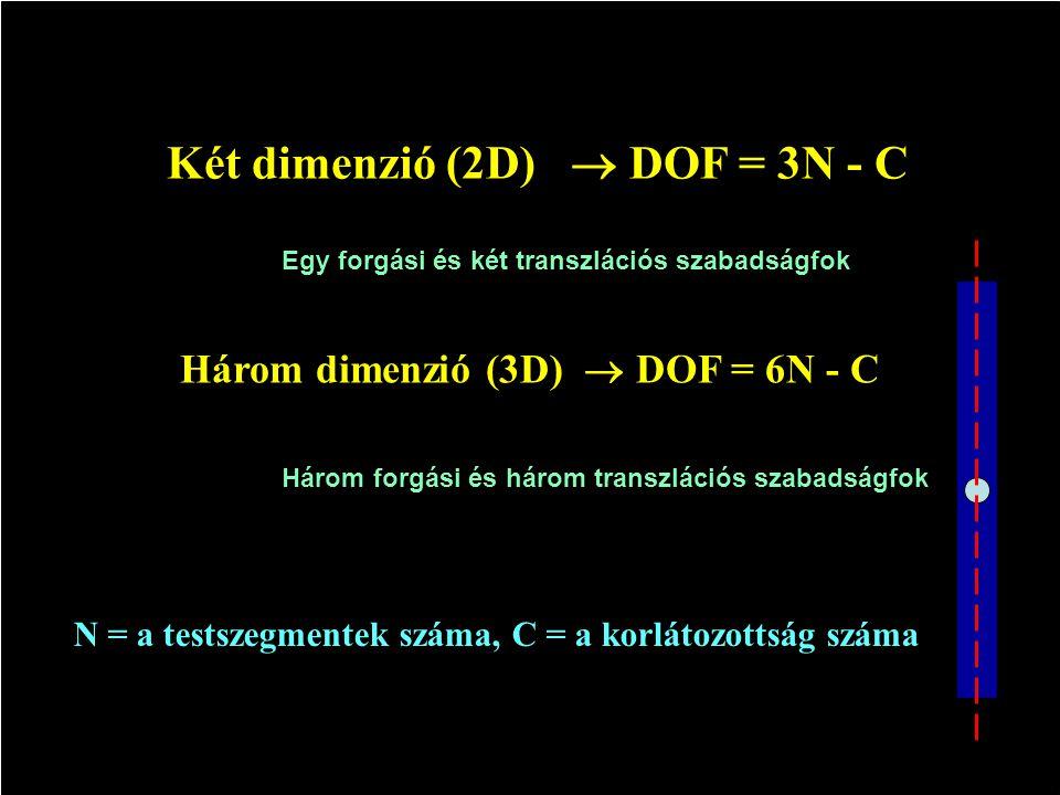 SZABADSÁGFOK ( DOF) DOF = a koordináták száma minusz a korlátozottság száma DOF a változóknak az a száma, amely a test mozgásának leírásához szükséges