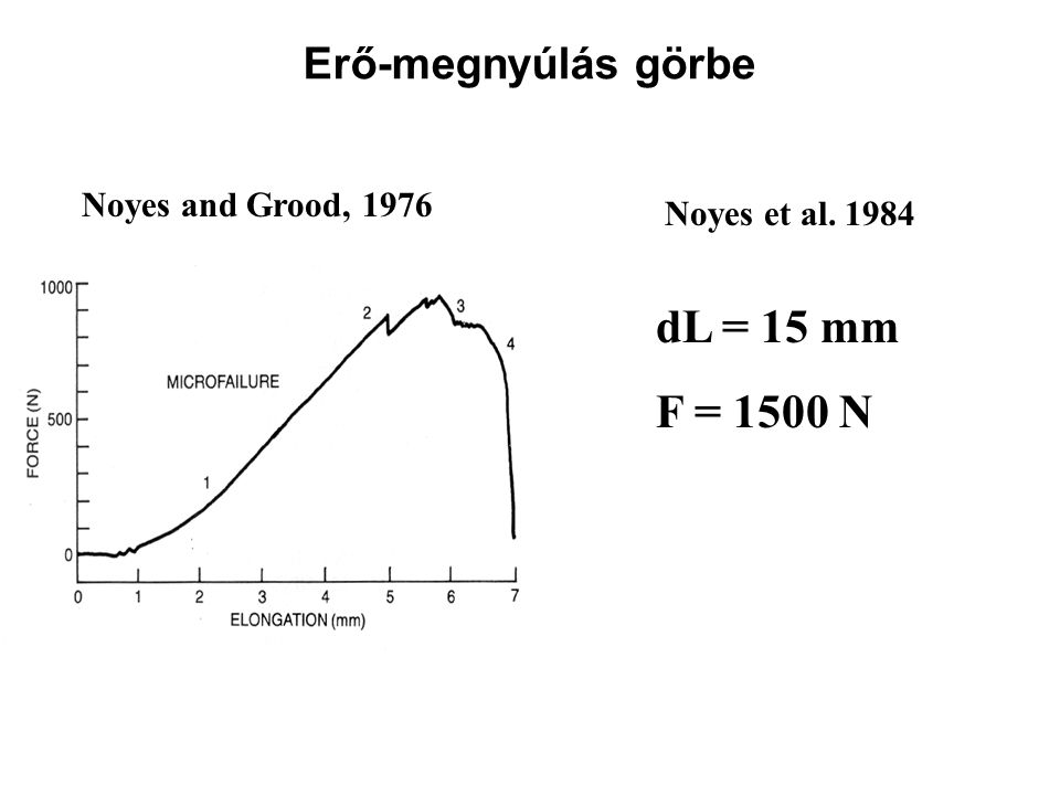 Noyes and Grood, 1976 Noyes et al. 1984 dL = 15 mm F = 1500 N Erő-megnyúlás görbe