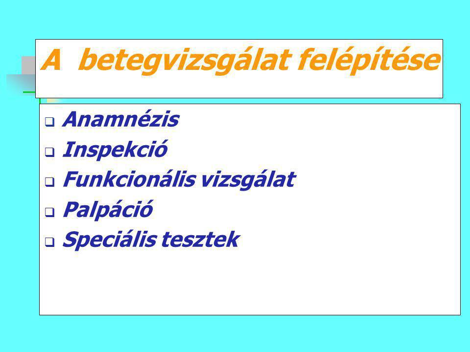 A betegvizsgálat felépítése  Anamnézis  Inspekció  Funkcionális vizsgálat  Palpáció  Speciális tesztek