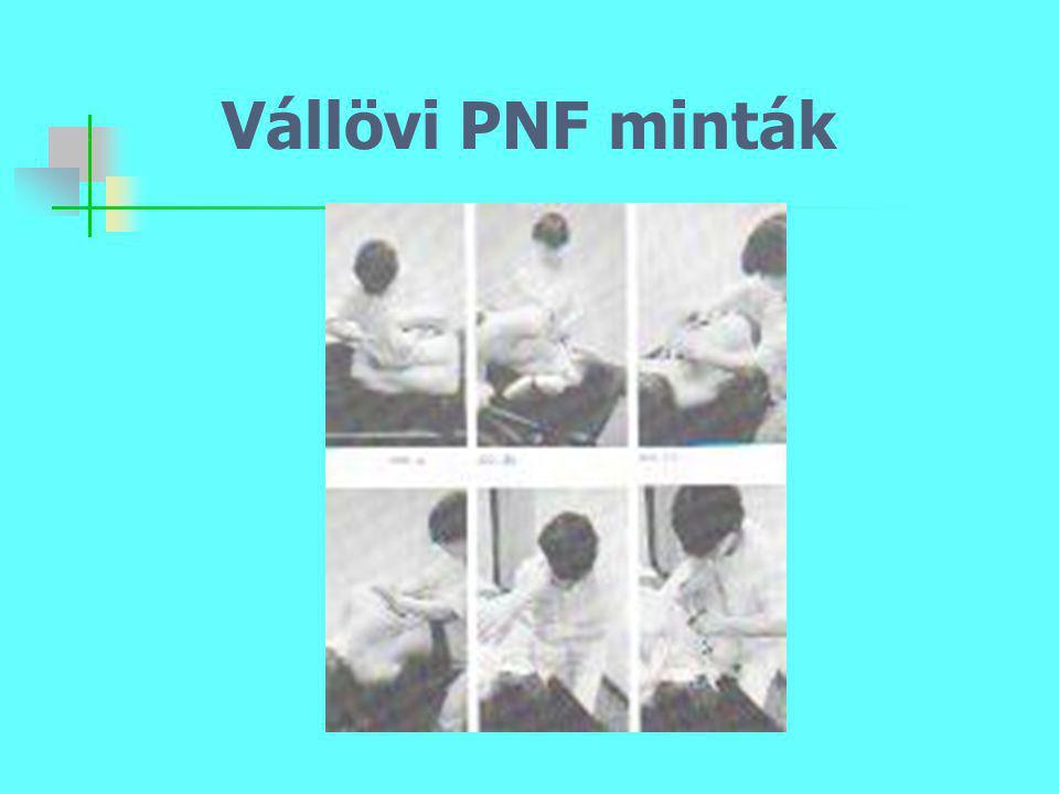 Vállövi PNF minták